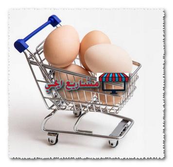 مشروع توزيع البيض