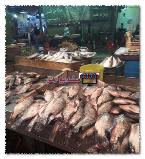 تكلفة محل السمك