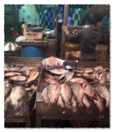اماكن بيع السمك جمله في مصر