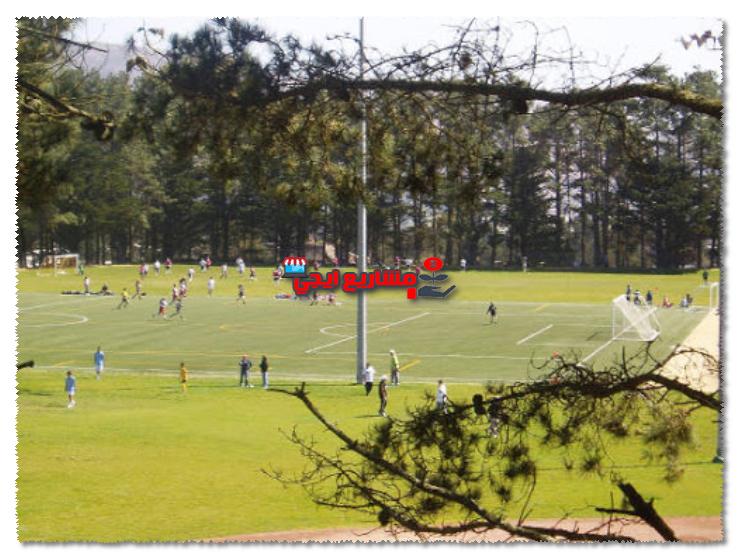 تجهيز ملاعب كرة قدم