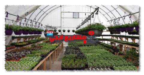 الصوب الزراعية