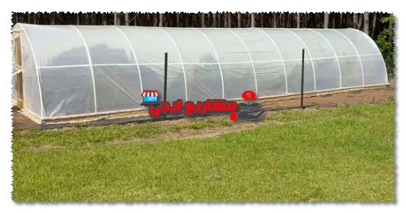مشروع الصوب الزراعية بالعاشر من رمضان